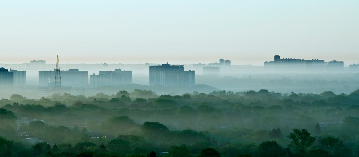 The Devastating Health Impact Of >> Air Pollution Has A Devastating Impact On Children S Health