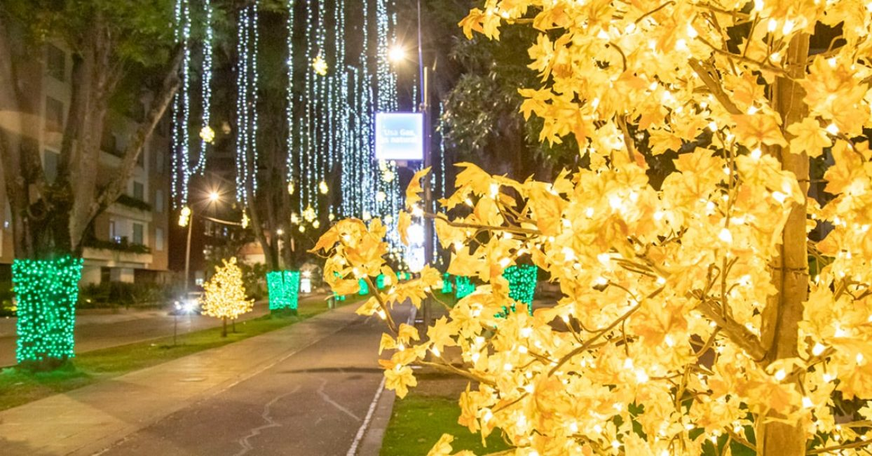 led-christmas-lights-colombia-min