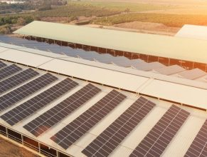 Solar PV plus battery storage, businesses become prosumers with Enel X